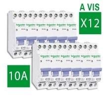 SCHNEIDER XP lot de 12 disjoncteurs D'clic 10A